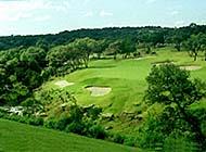 绿草如茵的高尔夫球场美丽风景图片