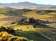 壮美的意大利托斯卡纳草原高清图片