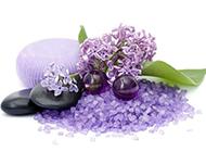 紫色花图片唯美背景素材
