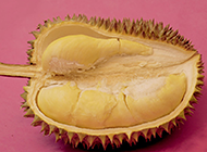 热带著名水果榴莲图片素材