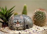 可爱萌手绘石头漫画猫咪图片