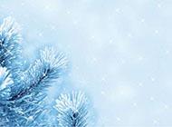 唯美的淡蓝色雪景高清背景图片