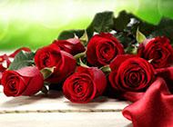 桌面壁纸非主流情人节玫瑰大全