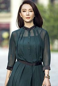 中国女演员陈数透视长裙性感街拍