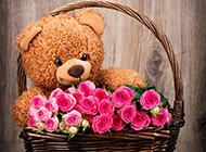 大花篮里的泰迪熊公仔和玫瑰花图片