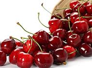 红润剔透的樱桃高清水果壁纸