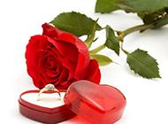 戒指与玫瑰浪漫唯美背景素材