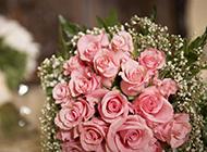 浪漫唯美的玫瑰手捧花