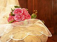 头纱上的玫瑰花图片