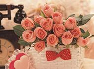 可爱花篮里的玫瑰唯美图片