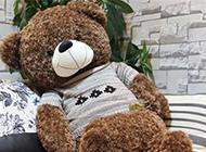 小熊可爱布偶卖萌图片大全