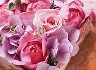 鲜花图片大全玫瑰花束浪漫素雅
