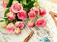 粉色玫瑰花束浪漫图片素材