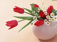 仿真花精致迷人插花图片