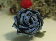 蓝玫瑰花图片素材分享