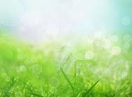 简约背景图片绿色春季风情