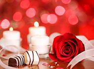 情人节巧克力玫瑰花浪漫唯美主题美图