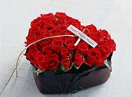 爱心火红鲜艳玫瑰摄影图