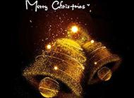 伤感唯美圣诞节主题节日素材精选