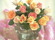花束与贺卡贝壳唯美图片