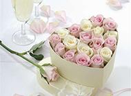 心形礼盒的娇嫩玫瑰花