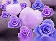 淡紫色鲜花背景素材分享