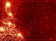 儿童圣诞树红色喜庆背景图片