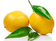 两个黄柠檬水果图片