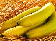 香蕉水果之王简约精美高清壁纸