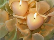 花瓣上燃烧的蜡烛摄影图片