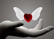 手中爱心天使高清背景图片