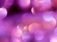 紫色梦幻淡雅qq背景图片