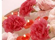 水上心形蜡烛与玫瑰花朵图片