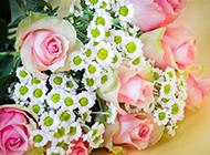 绚丽迷人的鲜花束唯美图片
