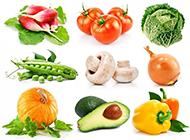 常见的高清蔬菜图片素材