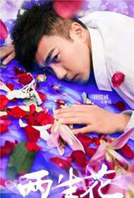组图:《两生花》主演刘恺威王丽坤唯美梦幻海报写真