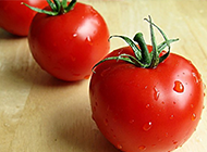 鲜嫩可口的西红柿植物图片