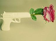 和平的艺术枪与玫瑰图片欣赏