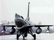 世界奇葩图片之飞机来了