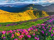 清新唯美的大自然风光壁纸欣赏