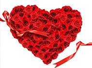 心型造型玫瑰花艺术照素材