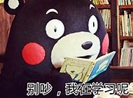 卖萌的熊本熊带字图片