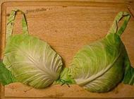 绿色环保内衣网络恶搞图片
