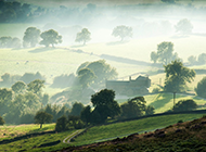 清晨平原云雾袅袅风景图片