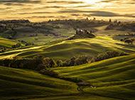 宽阔无边的绿色田野风景壁纸图片