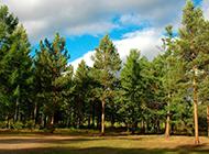 西伯利亚自然风景的图片欣赏