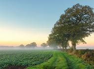 精选好看的乡村田园风景图片