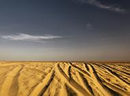 辽阔无边的金色沙漠图片
