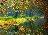 春天青翠欲滴绿色草地风景图片