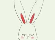 可爱卖萌的兔子卡通头像